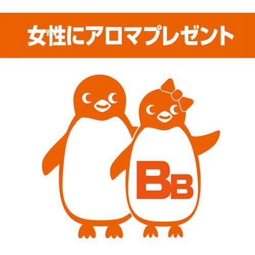 【朝食付】 カップルプラン ☆女性にアロマエッセプレゼント☆画像