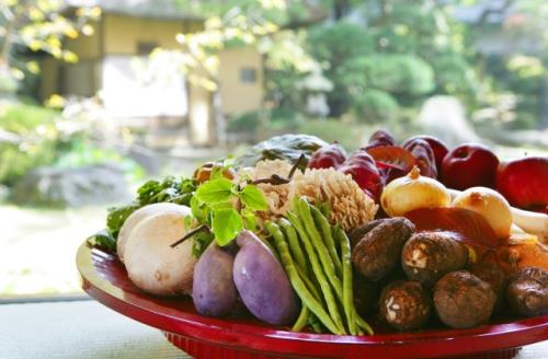 夏の限定プラン!自家農園のオーガニック夏野菜と季節の旬を盛り込んだ滝の湯会席